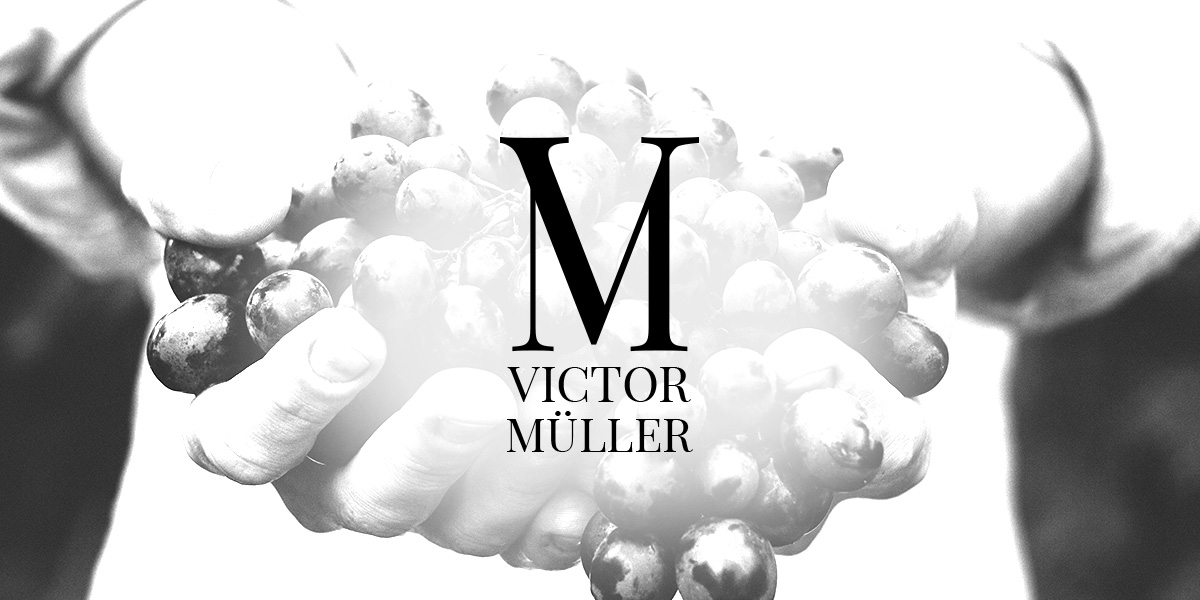 logo design muenchen corporated design brand victor muellers